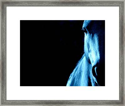 Blue Majesty.. Framed Print