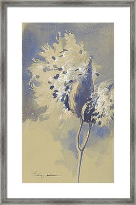 Blue Milkweed Framed Print by Tracie Thompson