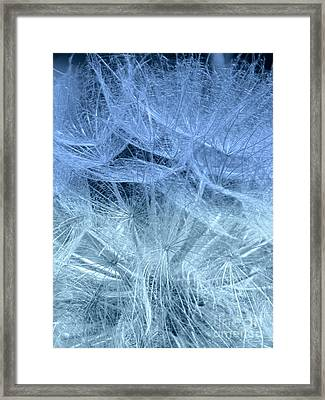 Framed Print featuring the photograph Blue Mist by France Laliberte