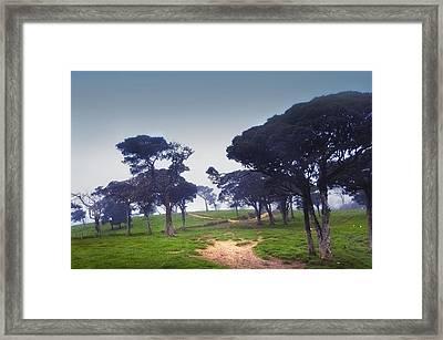 Blue Mist Silence. Sri Lanka Framed Print by Jenny Rainbow