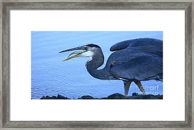 Blue Moment Framed Print