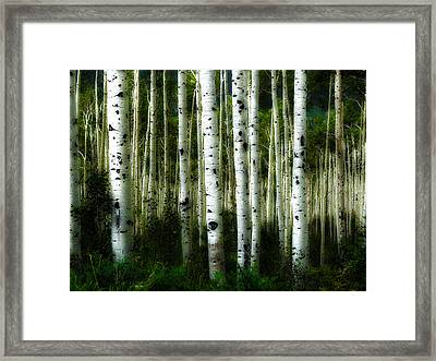 Framed Print featuring the photograph Blue Mood Aspens I by Lanita Williams