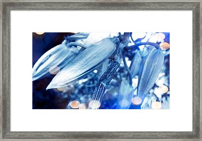 Blue Mood Of Orchids Framed Print