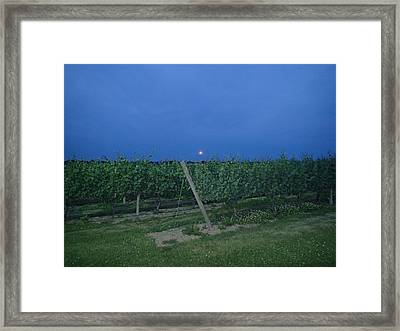Blue Moon Framed Print by Robert Nickologianis