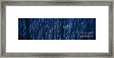 Blue Morning Framed Print by Diane Diederich