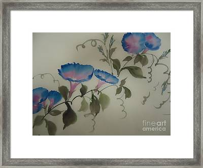 Blue Morning Glory Framed Print