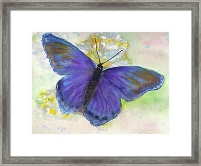 Blue Morph Framed Print by Jan Freeman