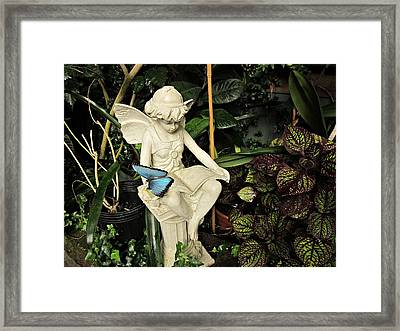 Blue Morpho On Statue Framed Print