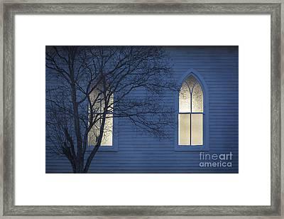 Blue Mulberry Framed Print