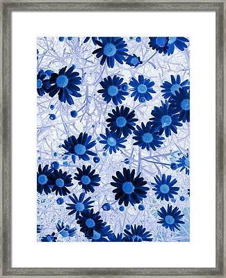 Framed Print featuring the digital art Blue Mystical Daisies  by Sandra Foster