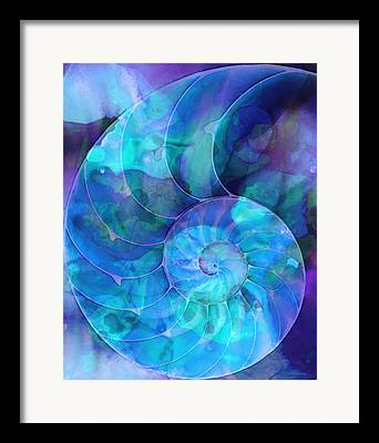 Seashell Framed Prints