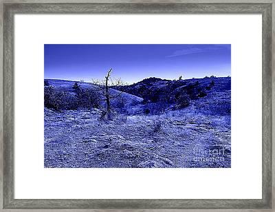 Blue Night Framed Print by Mickey Harkins