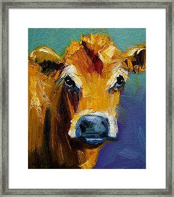 Blue Nose Cow Framed Print