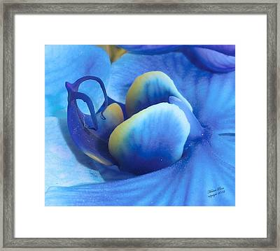 Blue Oasis Framed Print