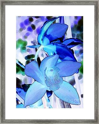 Blue Orchids Framed Print by Kathleen Struckle