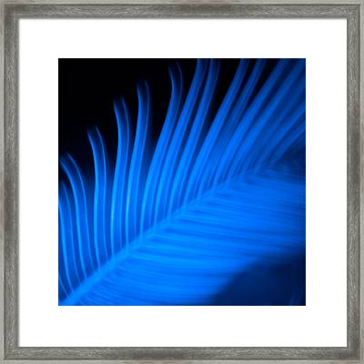 Blue Palm Framed Print