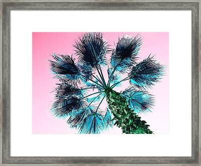 Blue Palm Tree With Pink Sky Framed Print