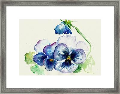 Blue Pansies Watercolor Framed Print