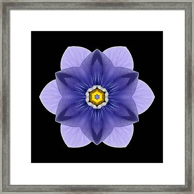 Framed Print featuring the photograph Blue Pansy I Flower Mandala by David J Bookbinder