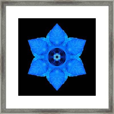 Framed Print featuring the photograph Blue Pansy II Flower Mandala by David J Bookbinder