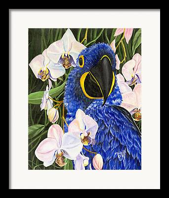 Michelle Kelly Paintings Framed Prints