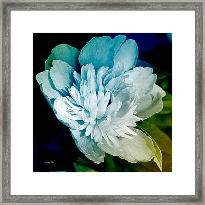 Blue Peony Flower Art Framed Print