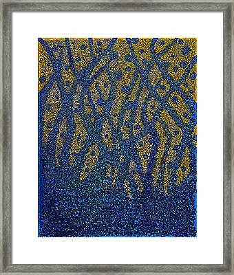 Blue Plant Framed Print by Shabnam Nassir
