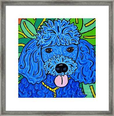 Blue Poodle Framed Print by Susan Sorrell