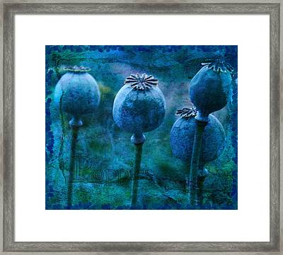 Framed Print featuring the photograph Blue Poppy Grunge by Sandra Foster