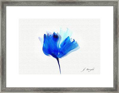 Blue Poppy Silouette Mixed Media  Framed Print by Frank Bright