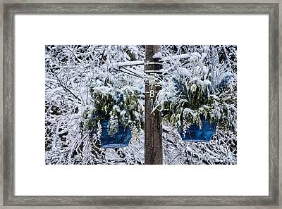 Blue Pots After Ice And Snow Storms Framed Print
