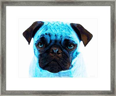 Blue - Pug Pop Art By Sharon Cummings Framed Print