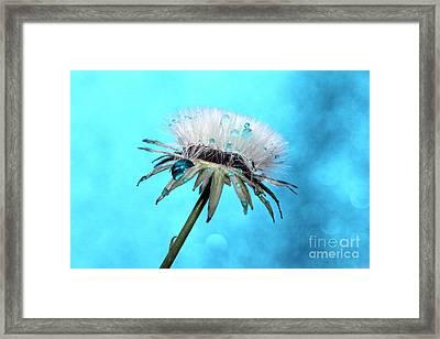 Blue Rain Framed Print by Krissy Katsimbras