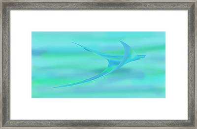 Blue Ray Framed Print by Stephanie Grant