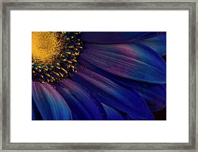 Blue Rays Framed Print