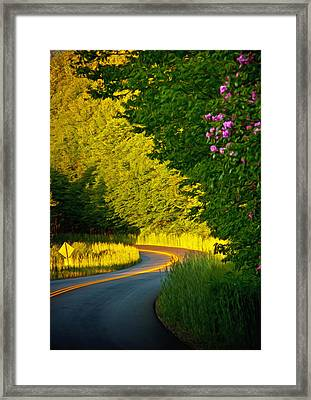 Framed Print featuring the photograph Blue Ridge Afternoon by John Haldane