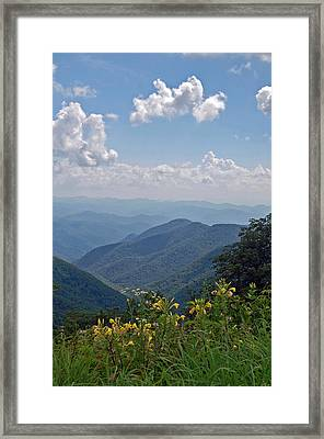 Blue Ridge Blossoms Framed Print by Mary Anne Baker