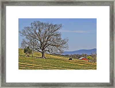 Blue Ridge Farm Framed Print