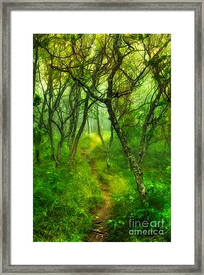Blue Ridge - Hiking Trail Through Trees In Fog II Framed Print by Dan Carmichael