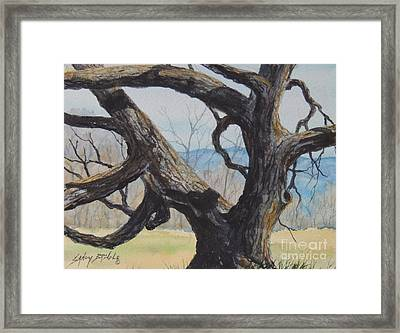 Blue Ridge Memories...sold Framed Print