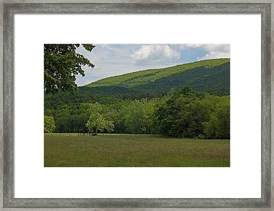 Blue Ridge Mountain Mama Framed Print by Suzanne Gaff
