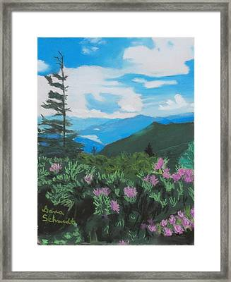 Blue Ridge Parkway In June Framed Print