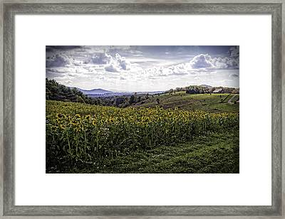 Blue Ridge View Framed Print