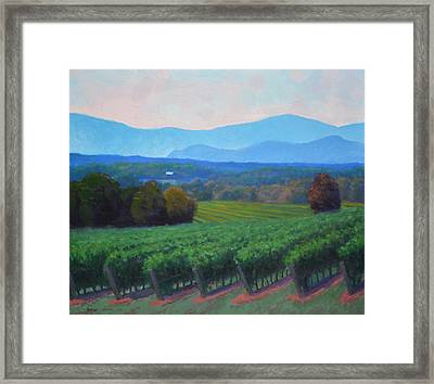 Blue Ridge Views Framed Print