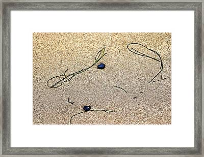 Framed Print featuring the photograph Blue Rocks And Seagrass by Bob Wall
