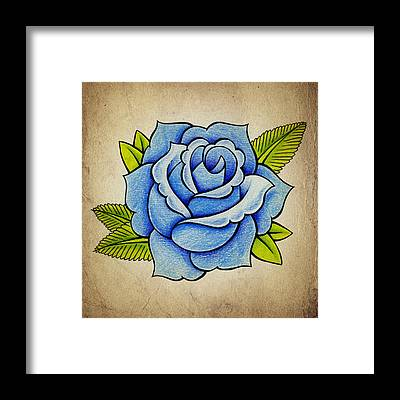 Rose Drawings Framed Prints