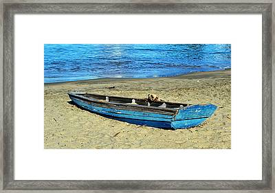 Blue Rowboat Framed Print by Holly Blunkall
