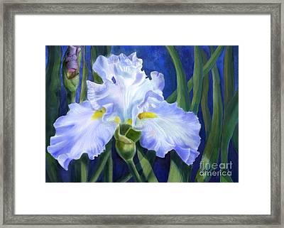 Blue Ruffles Framed Print