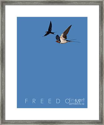 Framed Print featuring the drawing Blue Series 002 Freedom by Rob Snow