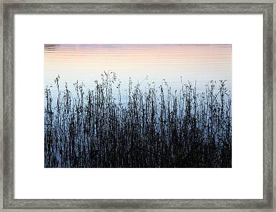 Blue Shadow  Framed Print
